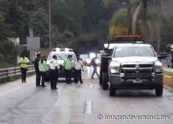Registran carambola de al menos 8 vehículos en bulevar Xalapa-Coatepec - Imagen de Veracruz