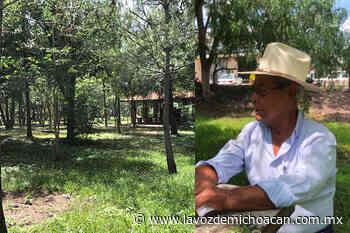 Don Luis Barajas: 11 años en defensa de su bosque, en Jiquilpan - La Voz de Michoacán