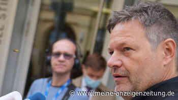Bundestagswahl 2021: Grüne bei Vizekanzlerschaft einig – Fraktionssitzung am Mittag