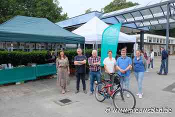 Gemeente denkt aan groepsaankoop voor duurzame renovatie (Brasschaat) - Het Nieuwsblad