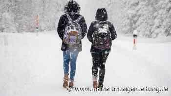 Winter Wetter 2021: Schnee-Prognose – Polarwirbel sorgt für Überraschung