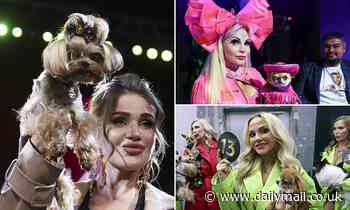 Glamorous Russian dog lovers show off their precious pooches at Moscow pet awards
