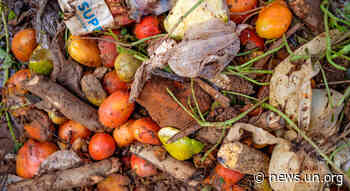 Food waste: a global problem that undermines healthy diets - UN News