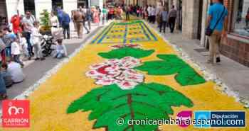 El singular y colorido Corpus Christi de Carrión de los Condes - Crónica Global