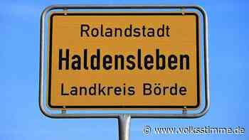 Haldensleben könnte Rolandstadt werden - Volksstimme
