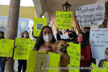 Por presión ciudadana, alcaldía de Jiquilpan investigará envenenamiento de perros - La Voz de Michoacán