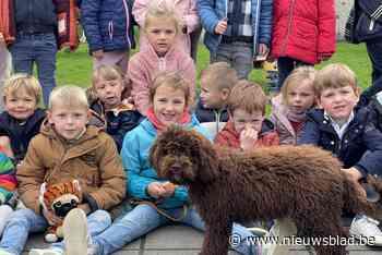 """In deze school is elke dag Werelddierendag: """"Onze nieuwe schoolhond Zoë is uniek"""""""