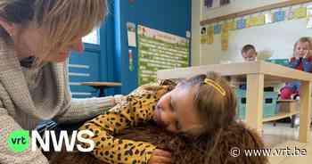 Schoolhond Zoë zorgt voor rust en vertrouwen op kleuterschool in Ieper - VRT NWS