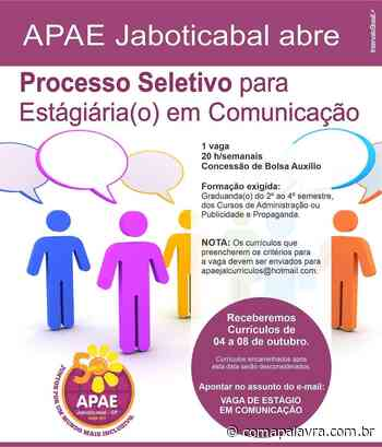 APAE de Jaboticabal abre Processo Seletivo para Estagiária(o) em Comunicação – Com a Palavra - Com a Palavra