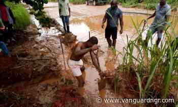 Ubani writes Buhari over abandoned Umuahia, Ikwuano/ Ikot-Ekpene Road Project - Vanguard