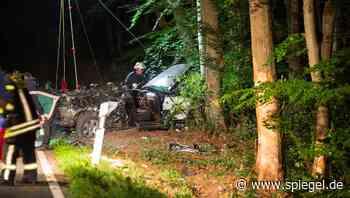 Fahrer im Prozess um Autounfall mit drei Toten: »Mir fehlen die Worte für das, was passiert ist« - DER SPIEGEL