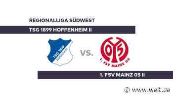 TSG 1899 Hoffenheim II - 1. FSV Mainz 05 II: Kann Mainz den Erfolgstrend weiter fortzsetzen? - Regionalliga Südwest - DIE WELT