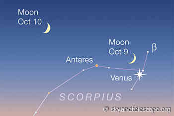 This Week's Sky at a Glance, October 8 – 16