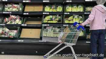 Versorgungschaos in Großbritannien: Jeder Sechste hat Probleme beim Einkauf