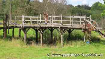 """""""Winnie Pooh""""-Brücke in England für 131.000 Pfund versteigert"""