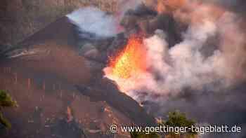 Katze auf La Palma von Vulkanlava eingeschlossen: Rettung aus der Luft?