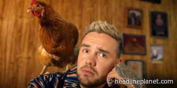 """Liam Payne Scheduled To Perform On October 14 """"Good Morning America"""" - HeadlinePlanet.com"""