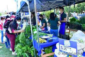 Intensa jornada de Soberanía Alimentaria en Villa del Rosario - Agenfor