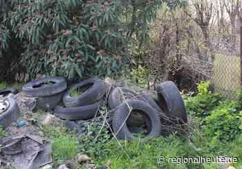 Reifen und Kühlschrank im Wald entsorgt - regionalHeute.de