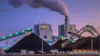 Govt tweaks policy to use biomass pellets in coal-fired power plants