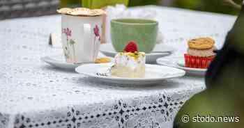 Besondere Kuchen aus Bad Schwartau - Stodo News