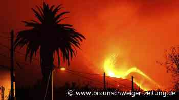 Mehrere Erdbeben erschüttern Vulkangebiet auf La Palma