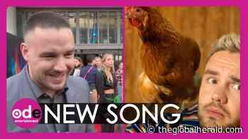 Liam Payne's Chicken Chums Co-Star in New Music Video - The Global Herald - The Global Herald