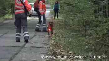 Vermisste achtjährige Julia lebend in Tschechien gefunden