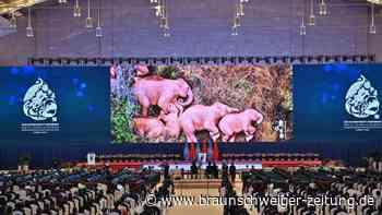 Deutschland will resoluten Kampf gegen Artensterben