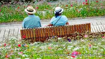 Rente: Diese Rentner bekommen jetzt Hunderte Euro mehr