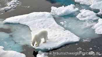 """Umweltschutz: Was bedeutet eigentlich """"klimaneutral""""?"""