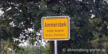 Versuchter Einbruch in Mehrfamilienhaus in Ammersbek - Polizei sucht Zeugen - Ahrensburg Portal