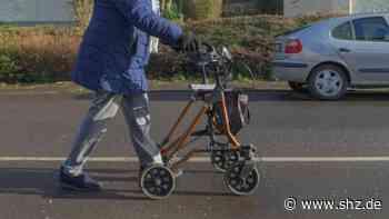 Seniorin bestohlen: Polizei stellt Handtaschendiebe in Ahrensburg   shz.de - shz.de