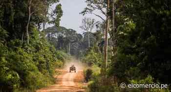 Mostrarán experiencias tecnológicas contra la deforestación y otros delitos ambientales - El Comercio Perú