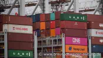 Fahrermangel: Britische Häfen beklagen Container-Rückstau