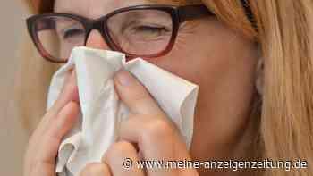 Öko-Test: Taschentücher auf dem Prüfstand– So schneiden die Marken ab