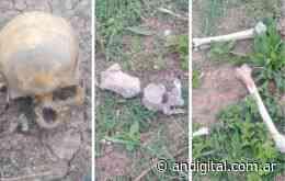 Hallan restos humanos en un terreno baldío de Florencio Varela - ANDigital