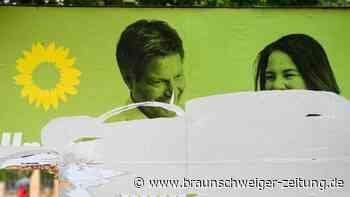 Zerstörte Wahlplakate: AfD und Grüne am häufigsten betroffen
