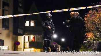 Fünf Menschen in Norwegen getötet: Mutmaßlicher Täter gesteht laut Medienberichten
