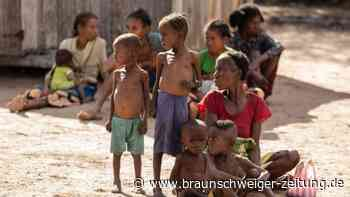 Über 800 Millionen Hungernde weltweit