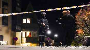 Norwegens Geheimdienst bewertet tödlichen Angriff in Kongsberg als Terrorakt