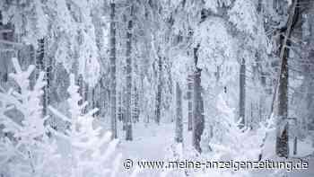 Winter 2021: Deutschland droht arktische Kälte – wegen Polarwirbelsplit