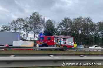 Veel verkeershinder na zwaar ongeval op E314 in Houthalen-Helchteren