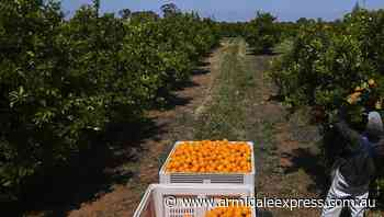 Union fight plan to volunteer on NSW farms - Armidale Express