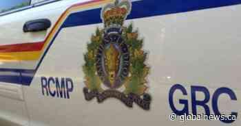 Girl, 7, dead after pedestrian collision near Wadena, Sask. - Globalnews.ca