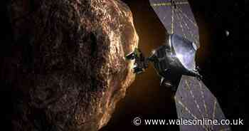 Nasa's Lucy asteroid mission ready for launch