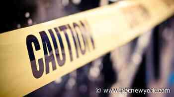 10-Year-Old Boy Killed in Long Island Car Crash: Police