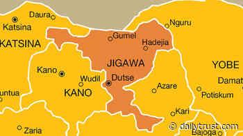 Jigawa treats 1.5m children against malaria - Daily Trust
