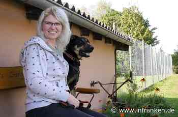 Der erste Flug ihres Lebens: Mainbernheimerin rettet Hund aus Rhodos
