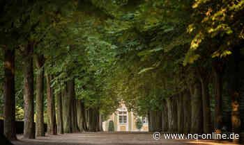 Alleen: Gartenkunst und Lebensraum-Blogs - Aktuelle Nachrichten der Neckarquelle   nq-online.de - Neckarquelle